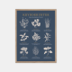 Gehalt-Krydderurter-Moerkeblaa-Plakat-Eg-Ramme-30x40