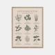 Gehalt-Krydderurter-Sand-Plakat-Eg-Ramme-30x40
