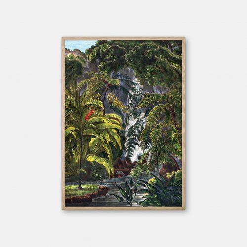Gehalt-Botanisk-palmarum-kunstplakat-Chamaedorea-Elatior-eg-ramme