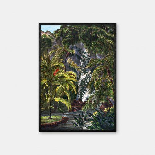 Gehalt-Botanisk-palmarum-kunstplakat-Chamaedorea-Elatior-sort-ramme