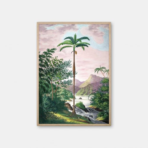 Gehalt-Botanisk-palmarum-kunstplakat-Iriartea-ventricosa-eg-ramme