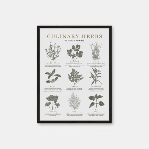 Gehalt-Culinary-Herbs-Lightgrey-Poster-Black-Painted-Frame