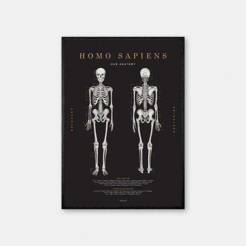 Gehalt-Homo-Sapiens-Black-Poster-Black-Painted-Frame