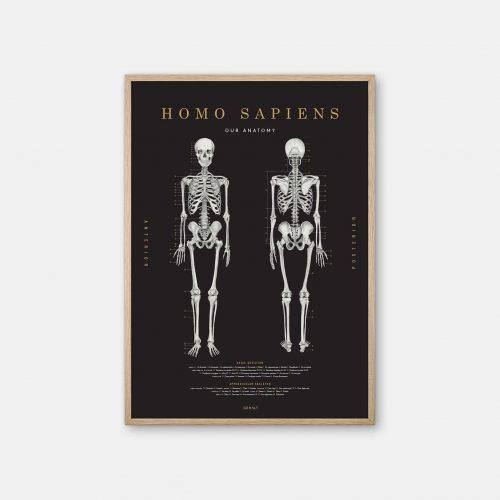Gehalt-Homo-Sapiens-Black-Poster-Oak-Frame