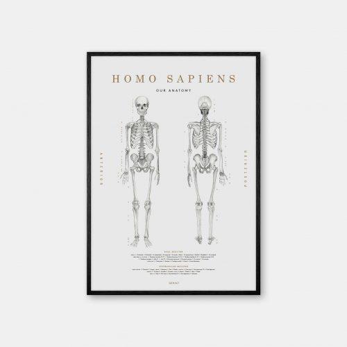 Gehalt-Homo-Sapiens-Lightgrey-Poster-Black-Painted-Frame