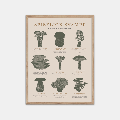 Gehalt-Spiselige-Svampe-Sand-Plakat-Eg-Ramme-30x40