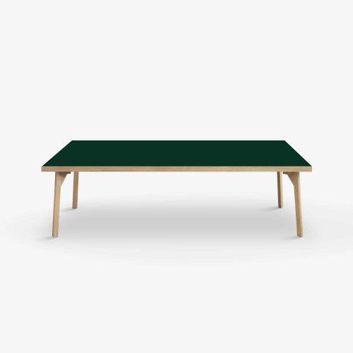 Room-lounge-140x70-conifer