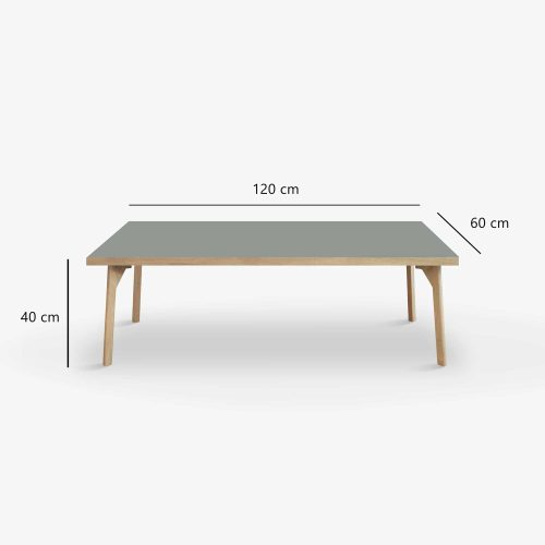Room-lounge-table-legs-120x60-ash-measures